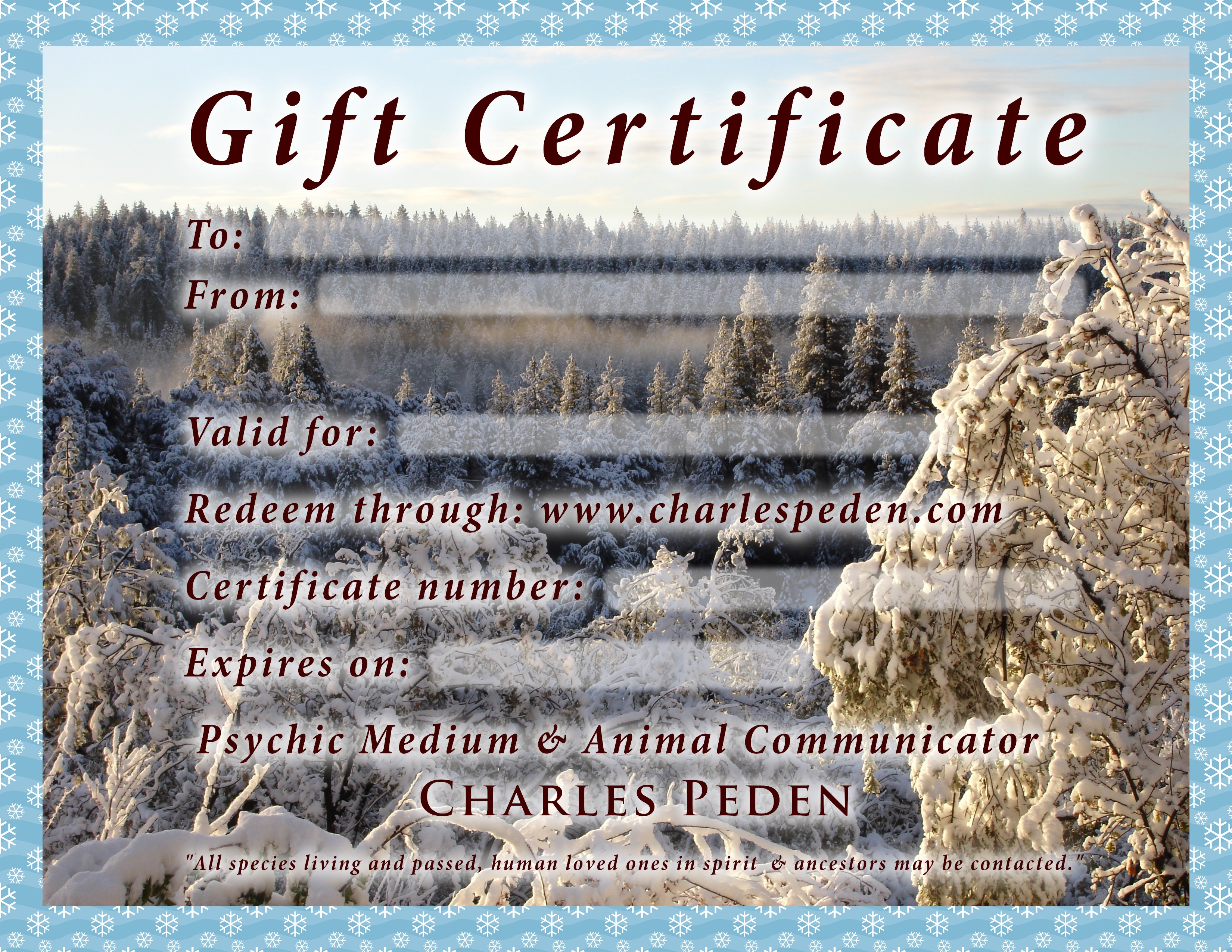 Gift certificate blank with a snowy winter forest scene in the background.