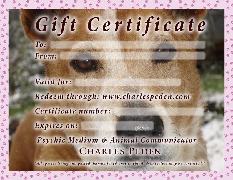 Gift certificate blank for a reading with psychic medium and animal communicator Charles Peden, a red healer dog is the background photo.
