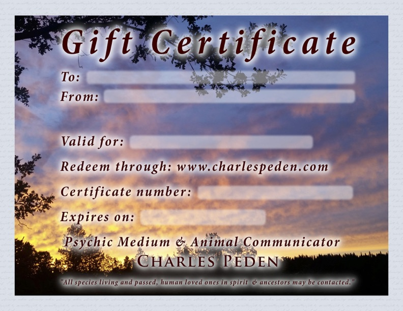 Gift certificate blank with a sunset framed by dark trees in the background.