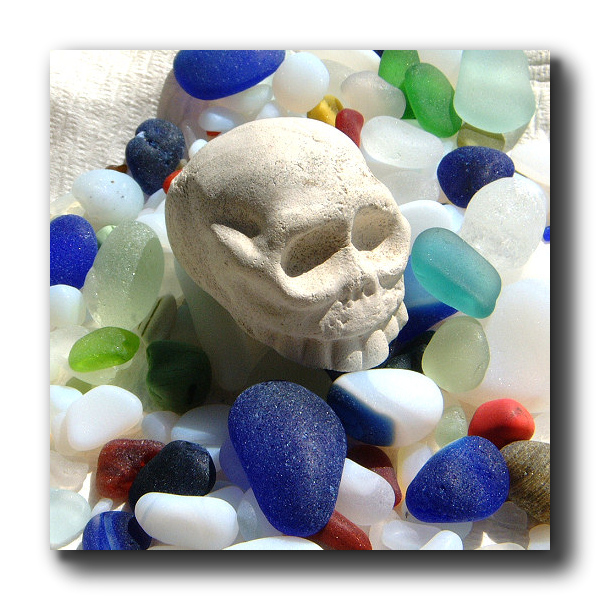 Skull smooth sea glass