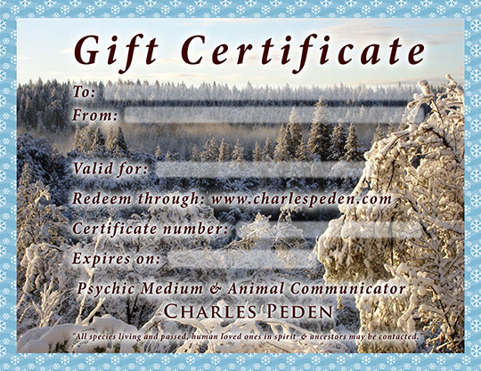 Gift certificate blank for a reading with psychic medium and animal communicator or pet psychic - Charles Peden. The background features a snow covered forest in the mountains of northern California near Lake Tahoe.