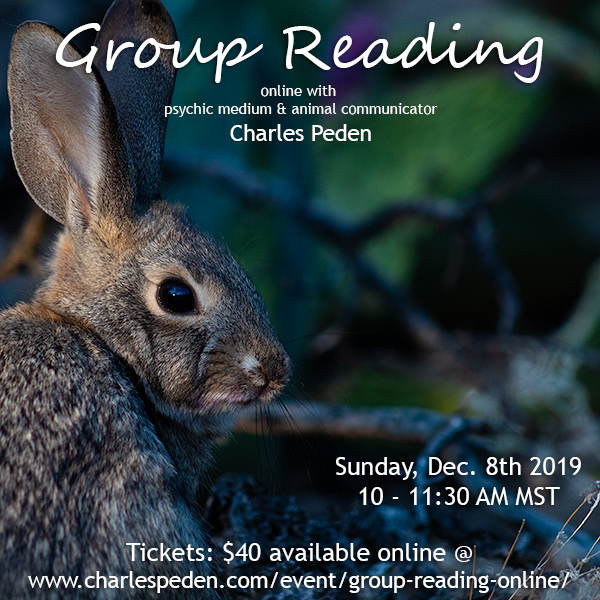 Group Reading online with psychic medium and animal communicator Charles Peden.